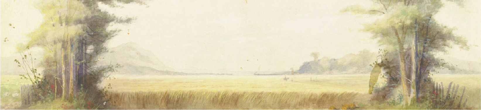 Landscape of trees with open field. By Wood, John Z. Part of the Twin City Scenic Company Collection, University of Minnesota Performing Arts Archives.