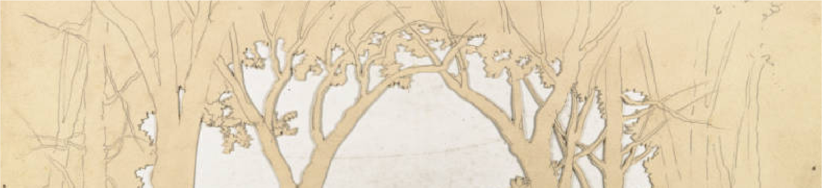 Sketch of a wood drop. Part of the Twin City Scenic Company Collection, University of Minnesota Performing Arts Archives.
